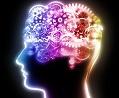 brain training gears